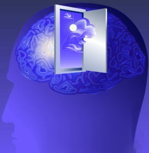 door-to-brain
